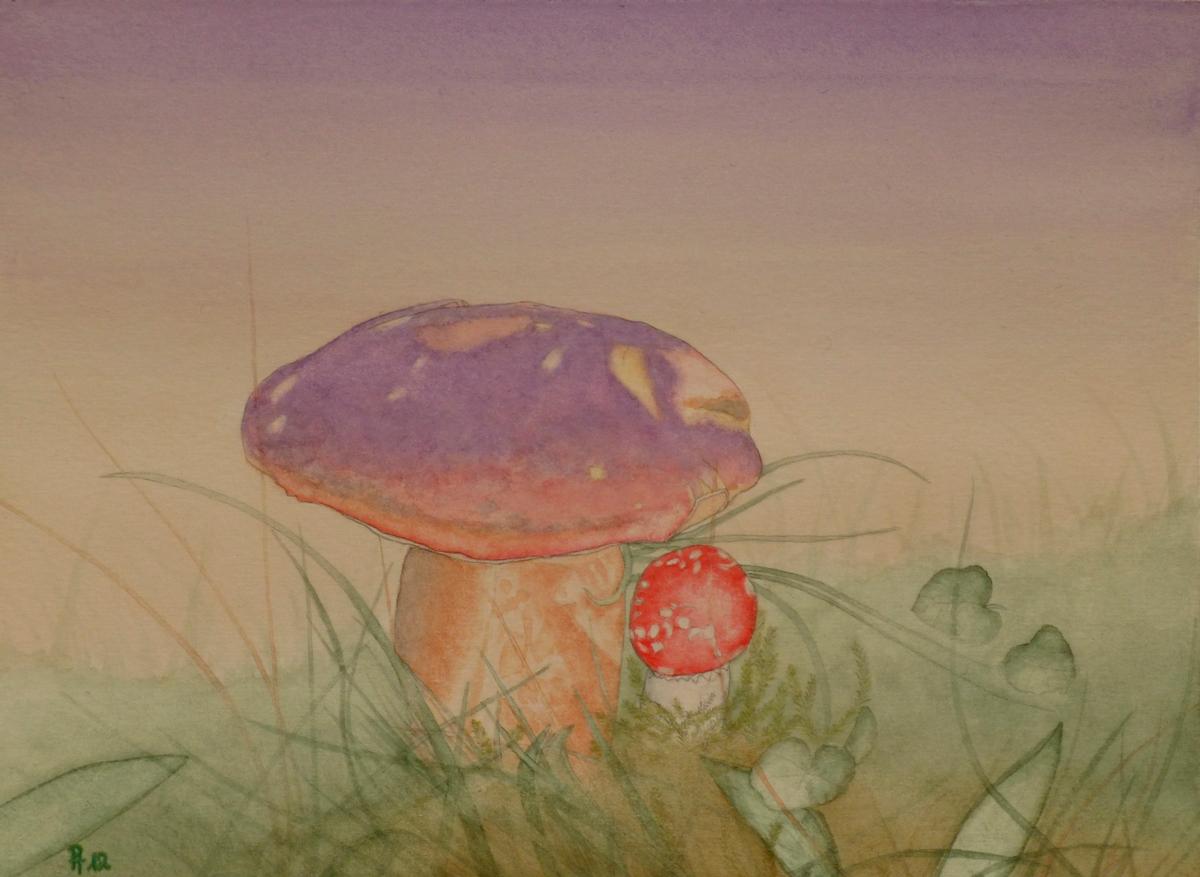 Pilze (verkauft)