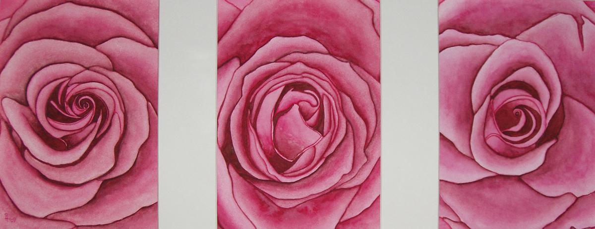 Rosen 3 (verkauft)