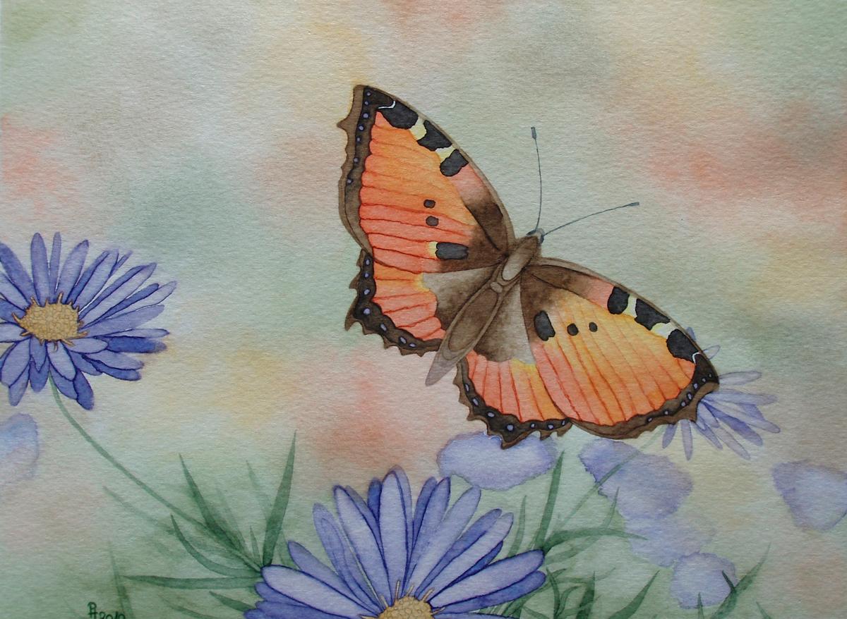 Schmetterling 4 (zu verkaufen)