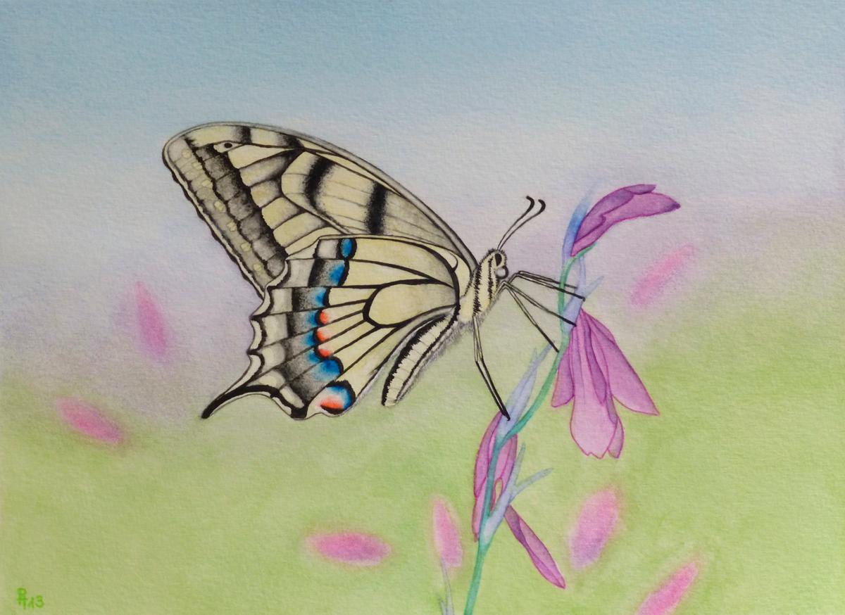 Schmetterling 7 (verkauft)