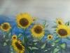 Sonnenblumen im Wind (nicht verkäuflich)