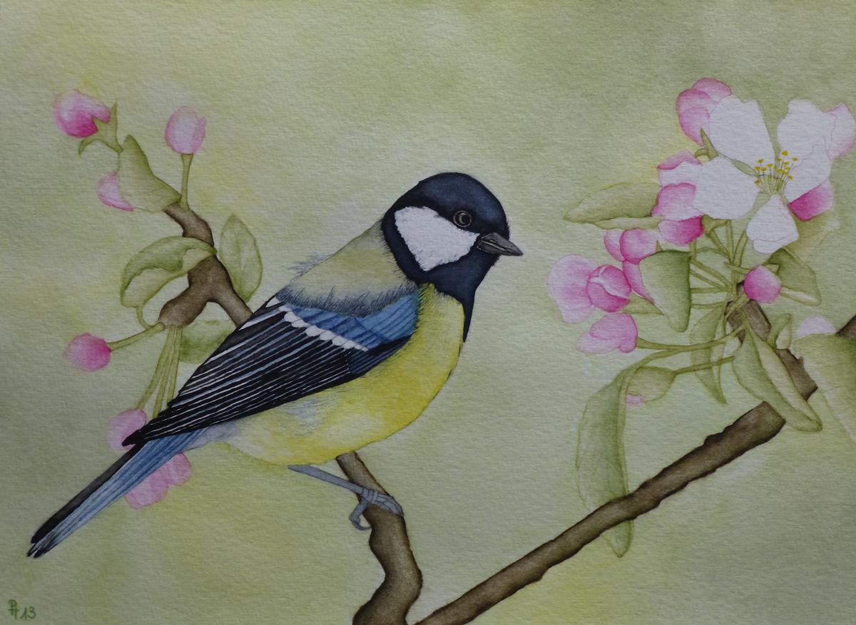 Vogel 2 (zu verkaufen)